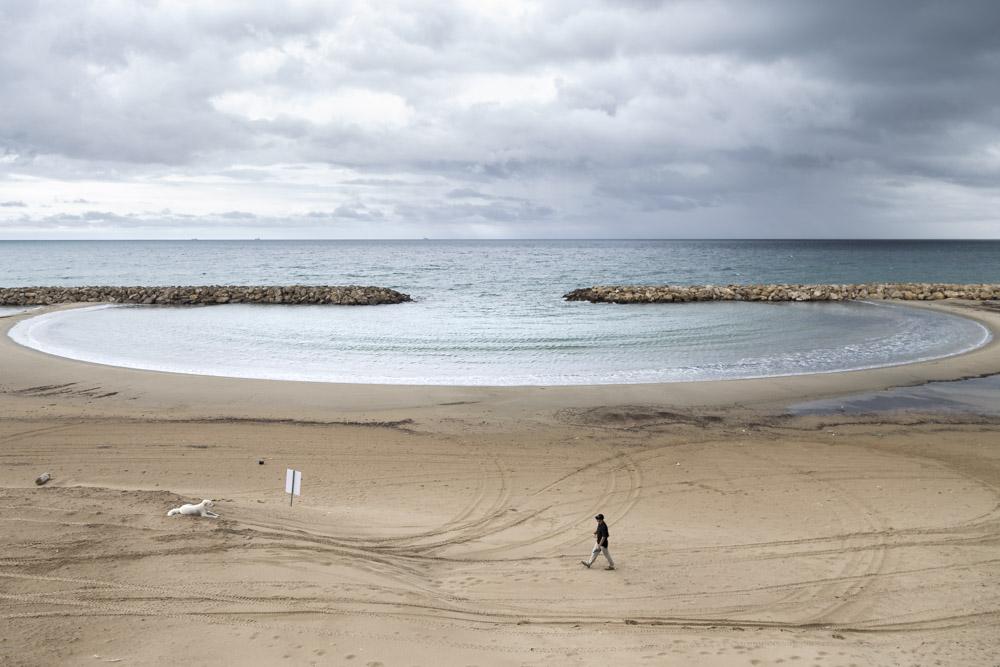 seascape, mare, veduta, uomo, cane